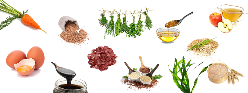 ingredients-compilation.png